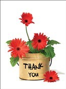 6436 Thank You Card - Red daisies in can (Pack of 50)