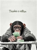 6443 Thank You Card - Chimp counts money (Pack of 50)