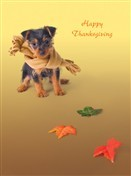 7324 Thanksgiving Card - Dog, scarf, colorful leaves (Pack of 50)