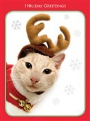 7560 Christmas Card - Cat as reindeer (Pack of 50)